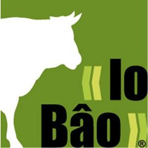 lo bao