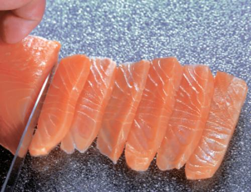 Saumon Sauvage zone de pêche Atlantique Nord-ouest